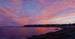 Cove-Sunset,-2011,-oil-on-panel,-10-x-19-in.jpg
